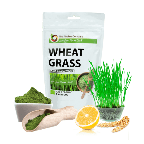 Wheat-grass-búzafű