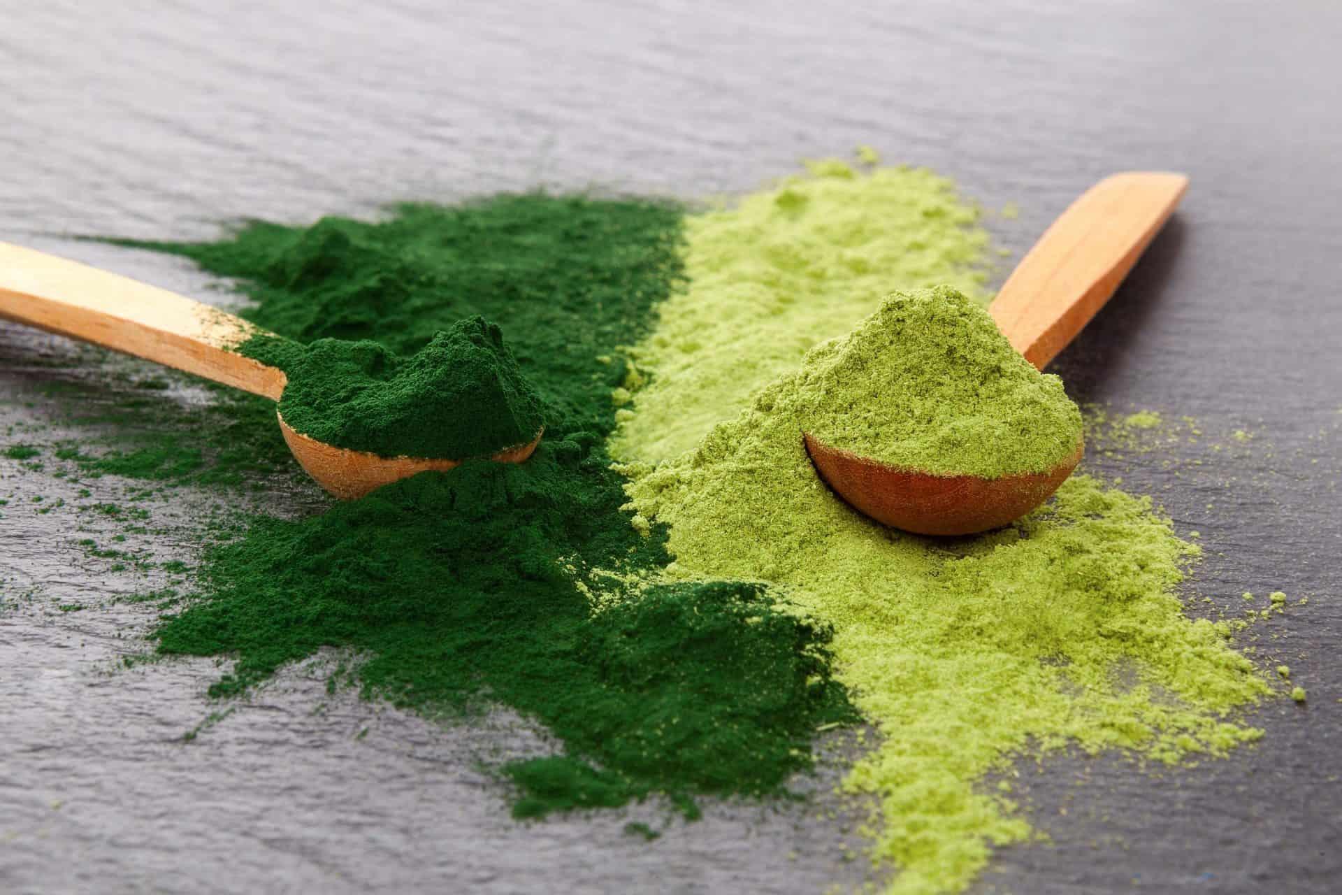 alga kiegészítők méregtelenítés