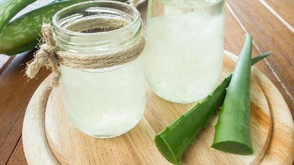 aloe vera gyógynövény