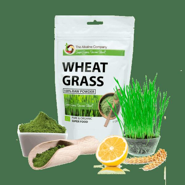 Wheat-grass-búzafű